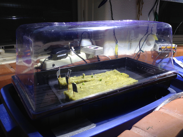 GerminationStation