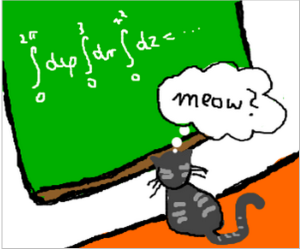 Simple Math With Cat